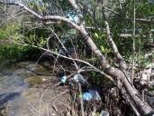 Humedal que ha perdido vidas en Ciudad Pesquera y ganado enemigos