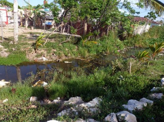 Riachuelo albañal que tributa al río Jiquibú