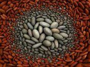 1935b65fd3ae2579eae396d916d5979f--landart-pebble-art