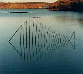 Land Art - pez todos contra el arte